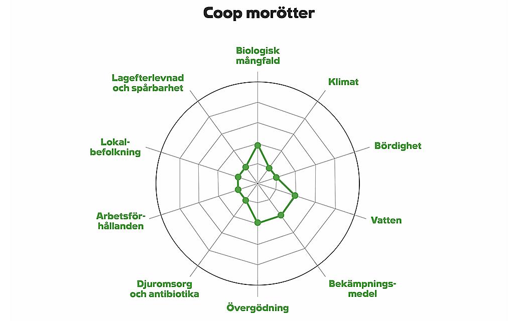 Illustration av Coops hållbarhetsdeklaration