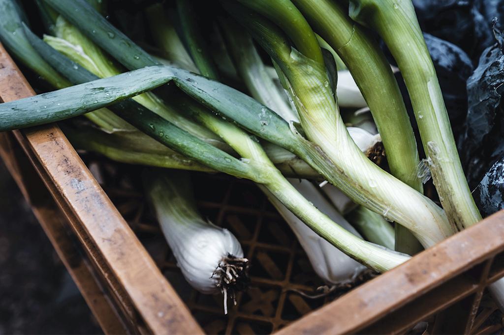 Grönsaker i träback